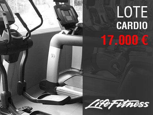 LOTE MÁQUINAS CARDIO LIFEFITNESS 17000