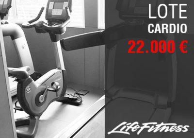 LOTE MÁQUINAS CARDIO LIFEFITNESS 22.000