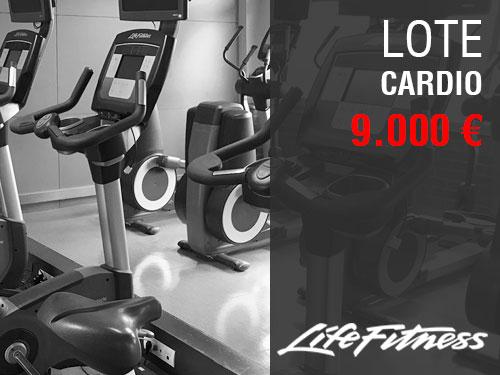 LOTE MAQUINAS CARDIO LIFEFITNESS 9000